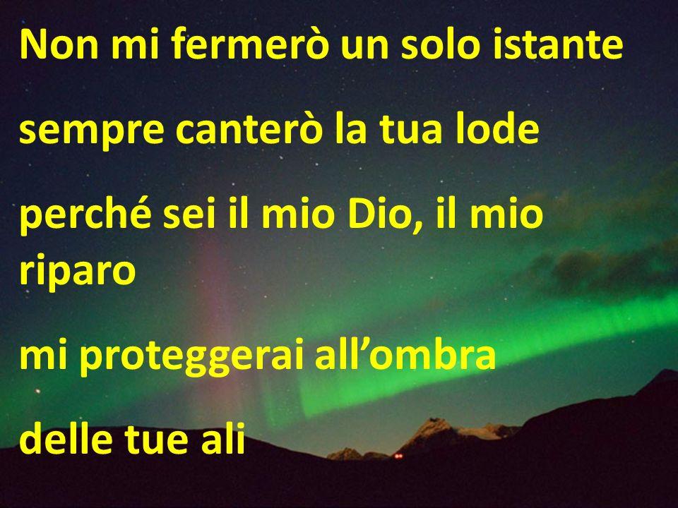Non mi fermerò un solo istante sempre canterò la tua lode perché sei il mio Dio, il mio riparo mi proteggerai allombra delle tue ali
