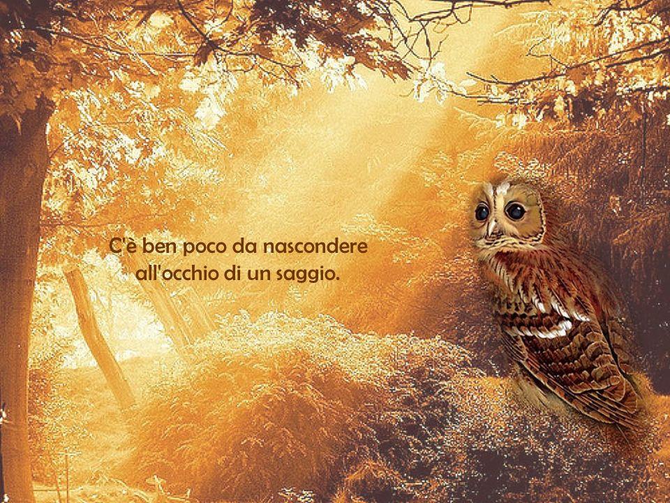 Le passioni fanno vivere l'uomo, la saggezza lo fa soltanto vivere a lungo. N.De Chamfort