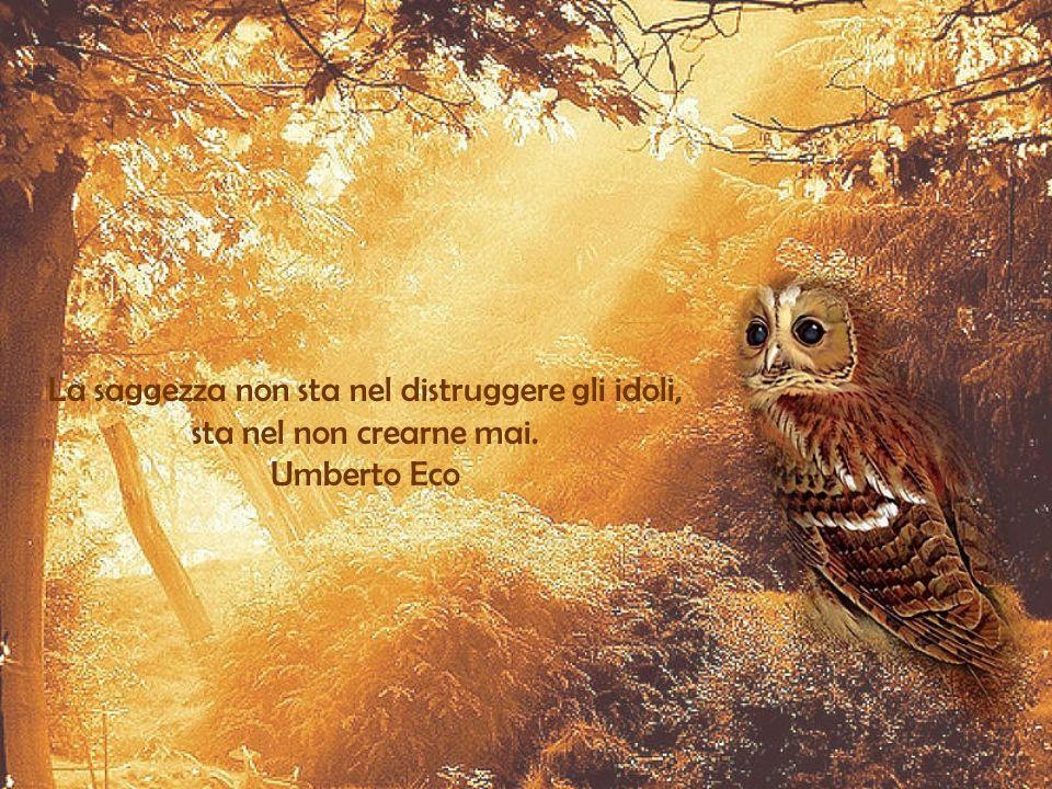 Di tutte le cose che la saggezza procura per ottenere un'esistenza felice, la più grande è l'amicizia. Epicuro