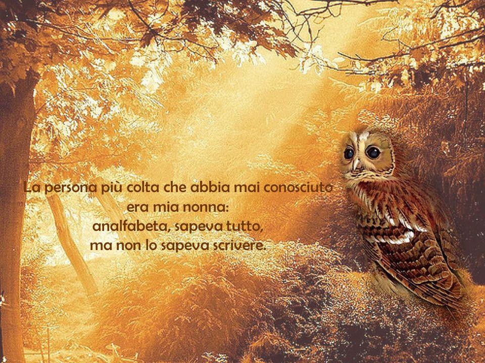 Il saggio muta consiglio, ma lo stolto resta della sua opinione. Francesco Petrarca