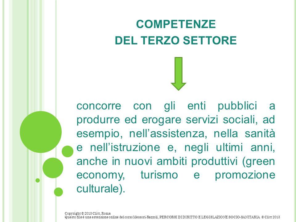 COMPETENZE DEL TERZO SETTORE concorre con gli enti pubblici a produrre ed erogare servizi sociali, ad esempio, nellassistenza, nella sanità e nellistr