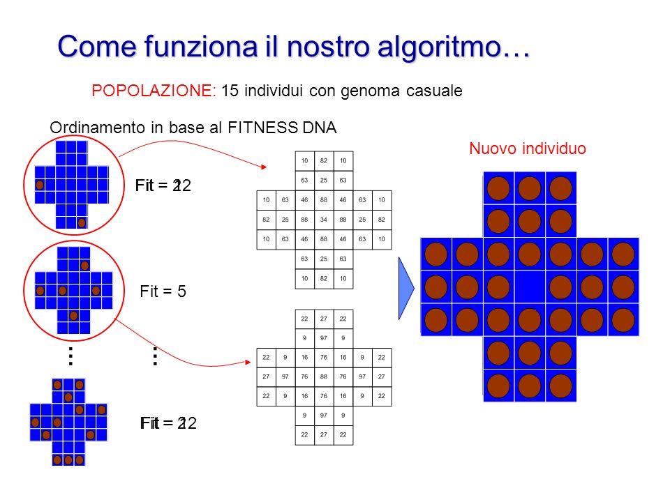 POPOLAZIONE: 15 individui con genoma casuale Come funziona il nostro algoritmo… … Ordinamento in base al FITNESS Fit = 2 Fit = 5 Fit = 12 … Fit = 2 DNA Nuovo individuo