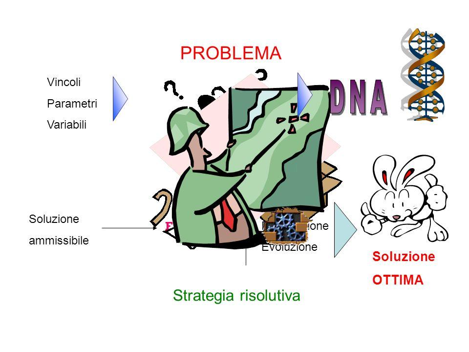 PROBLEMA Vincoli Parametri Variabili Soluzione ammissibile Strategia risolutiva FITNESS Selezione Riproduzione Evoluzione Soluzione OTTIMA