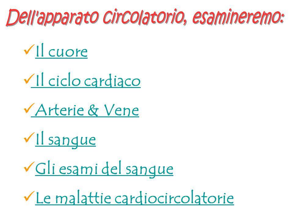 Il cuore Il ciclo cardiaco Arterie & Vene Il sangue Gli esami del sangue Le malattie cardiocircolatorie