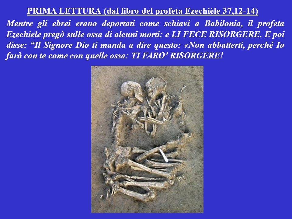 PRIMA LETTURA (dal libro del profeta Ezechièle 37,12-14) Mentre gli ebrei erano deportati come schiavi a Babilonia, il profeta Ezechiele pregò sulle ossa di alcuni morti: e LI FECE RISORGERE.