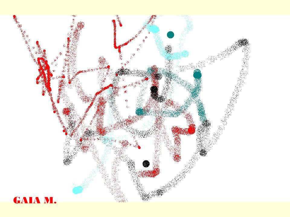 Questi sono i nostri primi disegni GAIA B.