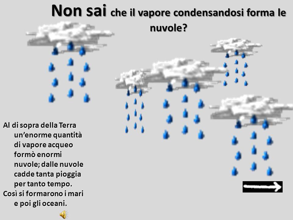 8)In cosa si trasformò il vapore? A.Una nube di gas Una nube di gasUna nube di gas B.Una pioggia incessante Una pioggia incessanteUna pioggia incessan