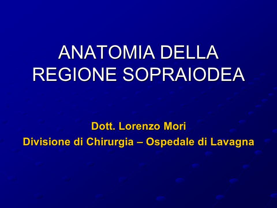 ANATOMIA DELLA REGIONE SOPRAIODEA Dott. Lorenzo Mori Divisione di Chirurgia – Ospedale di Lavagna