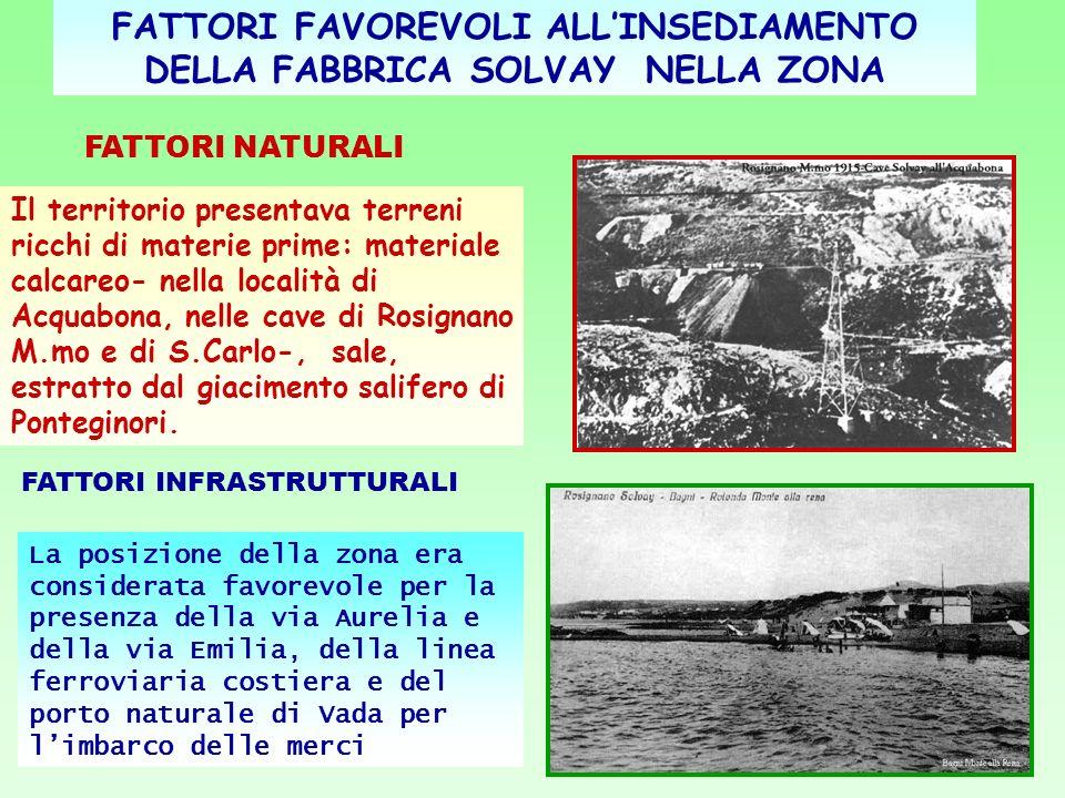 IMPLICAZIONI ECONOMICO-POLITICHE A Rosignano erano presenti terreni paludosi a basso costo.