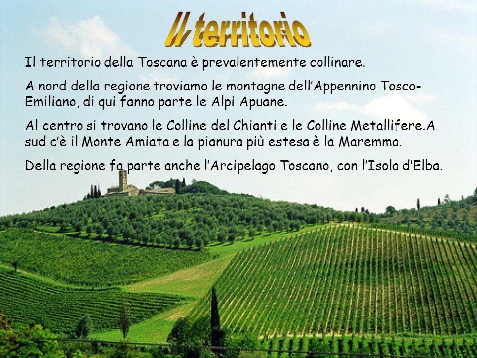 Il territorio della Toscana è prevalentemente collinare. A nord della regione troviamo le montagne dellAppennino Tosco- Emiliano, di qui fanno parte l