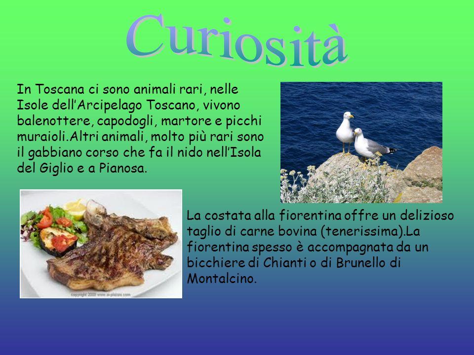 In Toscana ci sono animali rari, nelle Isole dellArcipelago Toscano, vivono balenottere, capodogli, martore e picchi muraioli.Altri animali, molto più