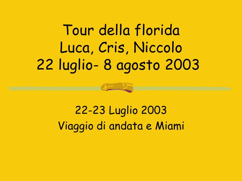 Tour della florida Luca, Cris, Niccolo 22 luglio- 8 agosto 2003 22-23 Luglio 2003 Viaggio di andata e Miami