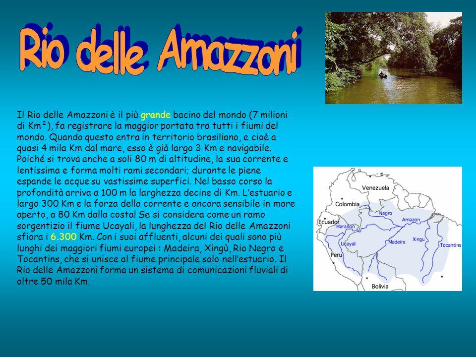 Il Rio delle Amazzoni è il più grande bacino del mondo (7 milioni di Km²), fa registrare la maggior portata tra tutti i fiumi del mondo.