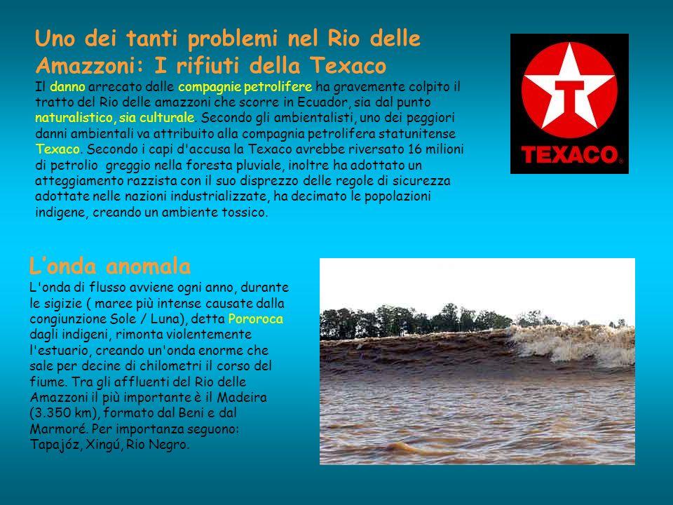 Uno dei tanti problemi nel Rio delle Amazzoni: I rifiuti della Texaco Il danno arrecato dalle compagnie petrolifere ha gravemente colpito il tratto de