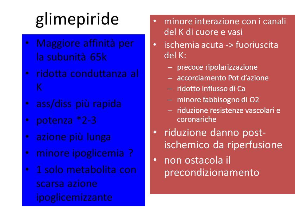 glimepiride Maggiore affinità per la subunità 65k ridotta conduttanza al K ass/diss più rapida potenza *2-3 azione più lunga minore ipoglicemia ? 1 so