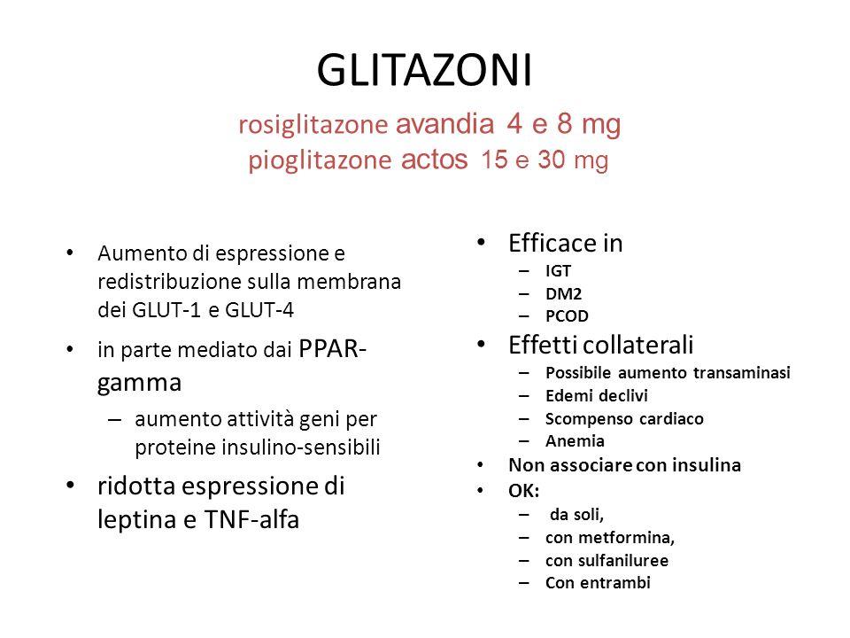 GLITAZONI rosiglitazone avandia 4 e 8 mg pioglitazone actos 15 e 30 mg Aumento di espressione e redistribuzione sulla membrana dei GLUT-1 e GLUT-4 in