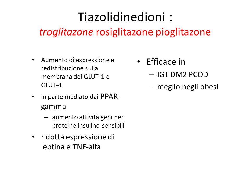 Tiazolidinedioni : troglitazone rosiglitazone pioglitazone Aumento di espressione e redistribuzione sulla membrana dei GLUT-1 e GLUT-4 in parte mediat