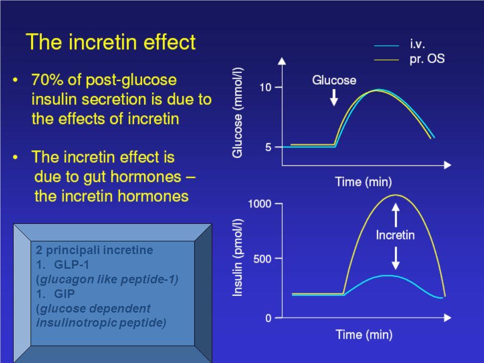 2 principali incretine 1.GLP-1 (glucagon like peptide-1) 1.GIP (glucose dependent insulinotropic peptide)