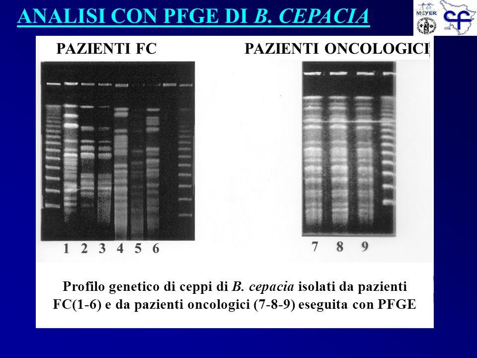 Profilo genetico di ceppi di B. cepacia isolati da pazienti FC(1-6) e da pazienti oncologici (7-8-9) eseguita con PFGE PAZIENTI FC PAZIENTI ONCOLOGICI