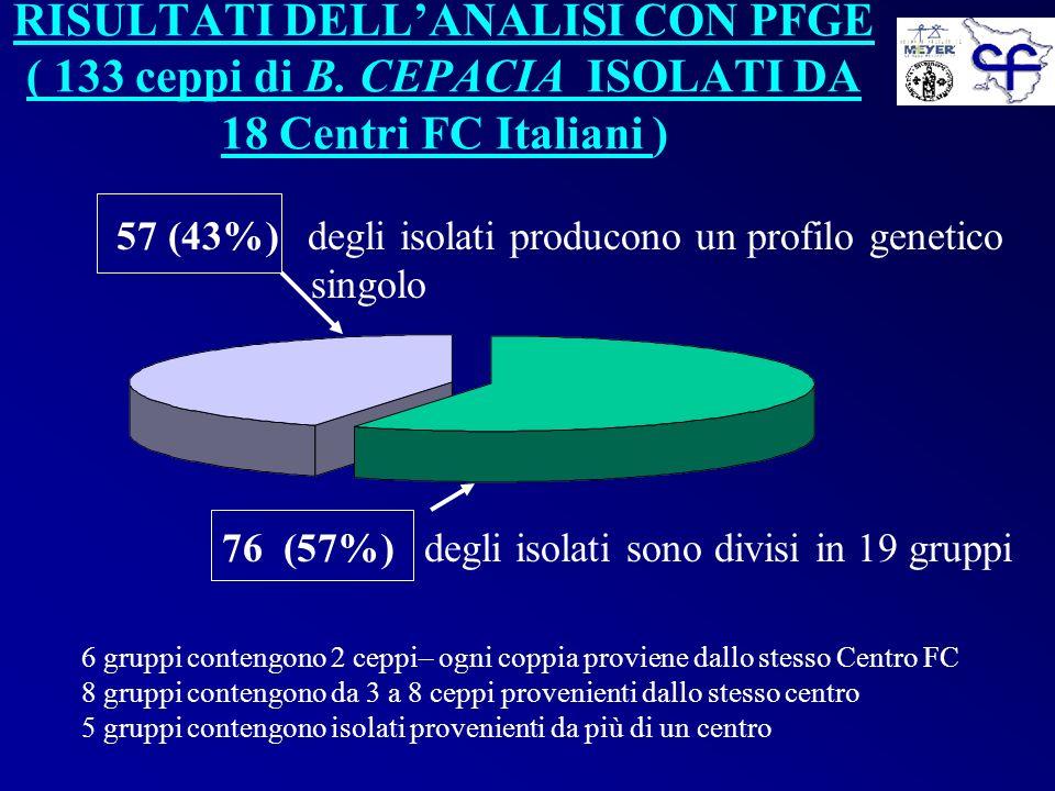 RISULTATI DELLANALISI CON PFGE ( 133 ceppi di B. CEPACIA ISOLATI DA 18 Centri FC Italiani ) 76 (57%) degli isolati sono divisi in 19 gruppi 57 (43%) d