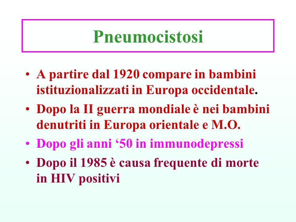 Pneumocistosi A partire dal 1920 compare in bambini istituzionalizzati in Europa occidentale. Dopo la II guerra mondiale è nei bambini denutriti in Eu