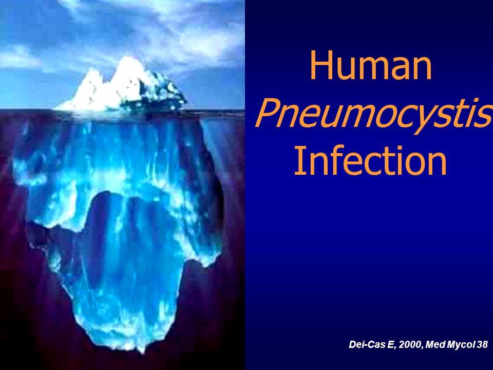 Human Pneumocystis Infection Dei-Cas E, 2000, Med Mycol 38