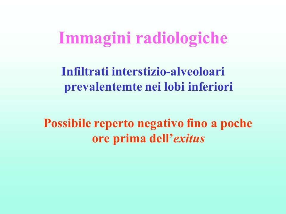 Immagini radiologiche Infiltrati interstizio-alveoloari prevalentemte nei lobi inferiori Possibile reperto negativo fino a poche ore prima dellexitus