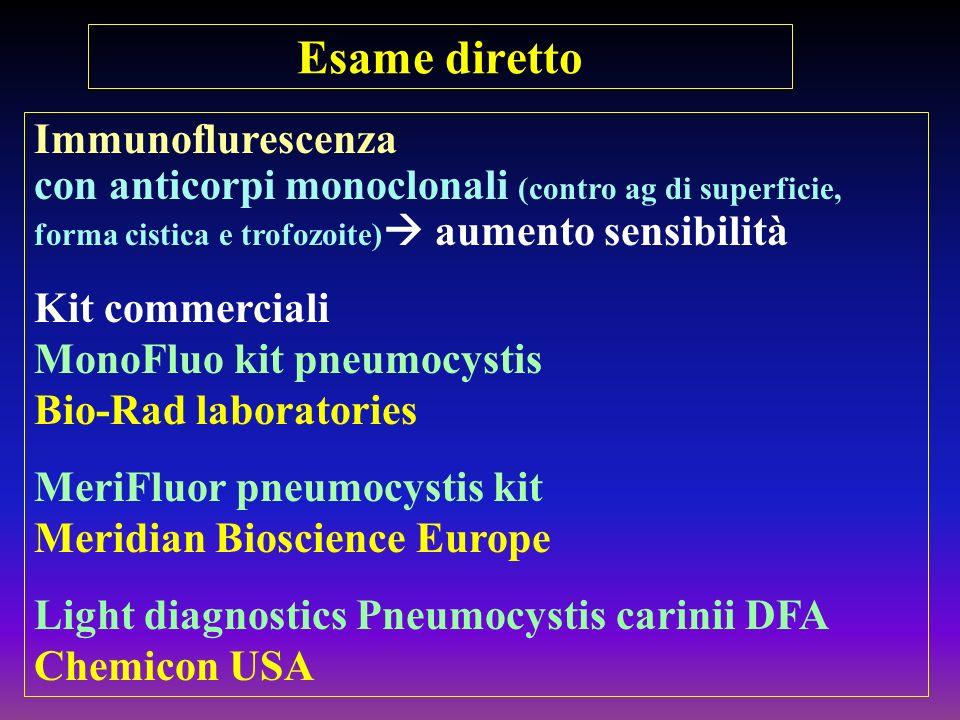 Esame diretto Immunoflurescenza con anticorpi monoclonali (contro ag di superficie, forma cistica e trofozoite) aumento sensibilità Kit commerciali Mo