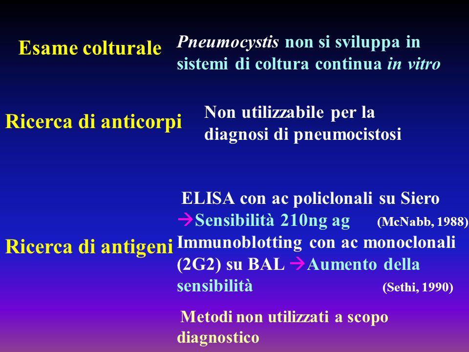 Esame colturale Non utilizzabile per la diagnosi di pneumocistosi ELISA con ac policlonali su Siero Sensibilità 210ng ag (McNabb, 1988) Immunoblotting