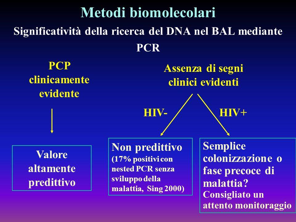 Metodi biomolecolari Significatività della ricerca del DNA nel BAL mediante PCR PCP clinicamente evidente Assenza di segni clinici evidenti HIV-HIV+ V