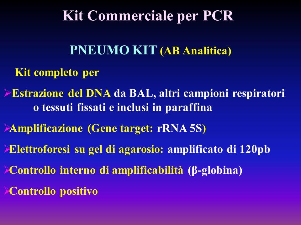 Kit Commerciale per PCR PNEUMO KIT (AB Analitica) Kit completo per Estrazione del DNA da BAL, altri campioni respiratori o tessuti fissati e inclusi i