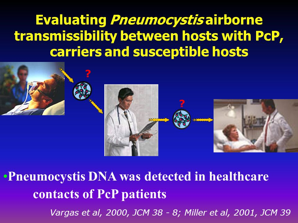 Evaluating Pneumocystis airborne transmissibility between hosts with PcP, carriers and susceptible hosts ? Pneumocystis DNA was detected in healthcare