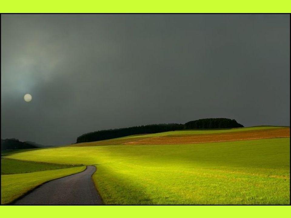 Incamminiamoci verso un cammino nuovo, alzando gli occhi al cielo e non tenendoli abbassati nella polvere dei nostri passi...