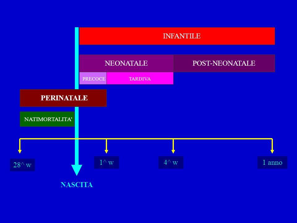 NASCITA 1^ w 28^ w 4^ w1 anno INFANTILE POST-NEONATALE PERINATALE NEONATALE PRECOCETARDIVA NATIMORTALITA