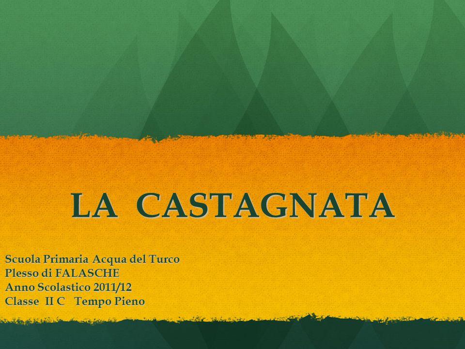 LA CASTAGNATA Scuola Primaria Acqua del Turco Plesso di FALASCHE Anno Scolastico 2011/12 Classe II C Tempo Pieno