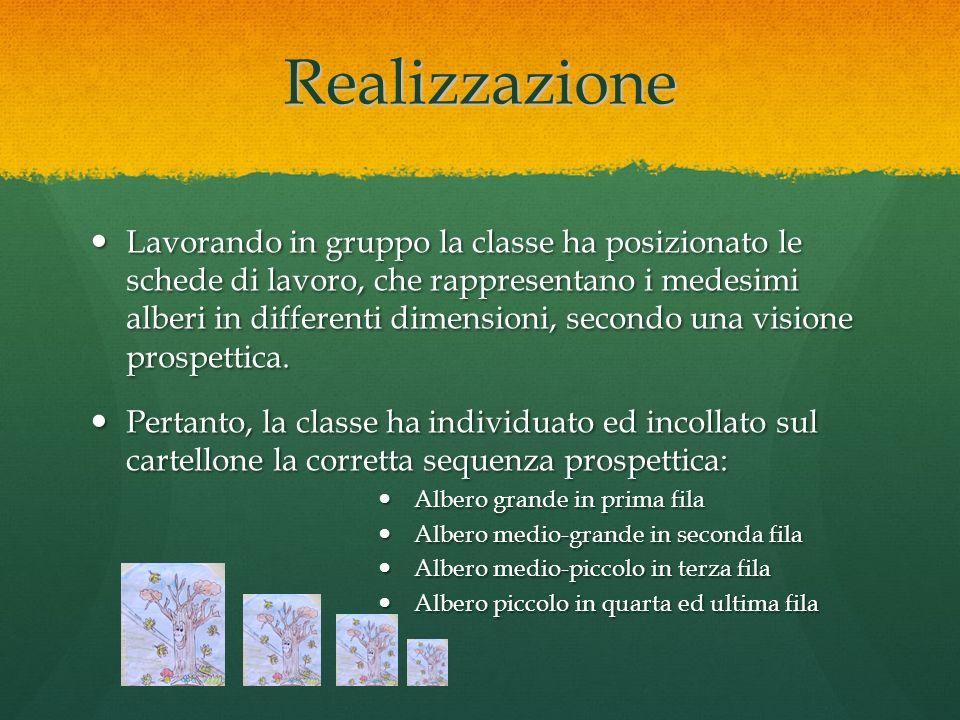 Realizzazione Lavorando in gruppo la classe ha posizionato le schede di lavoro, che rappresentano i medesimi alberi in differenti dimensioni, secondo