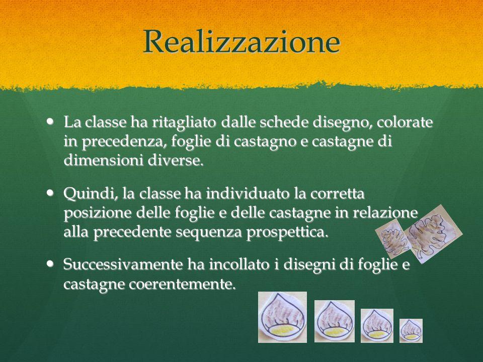 Realizzazione La classe ha ritagliato dalle schede disegno, colorate in precedenza, foglie di castagno e castagne di dimensioni diverse. La classe ha