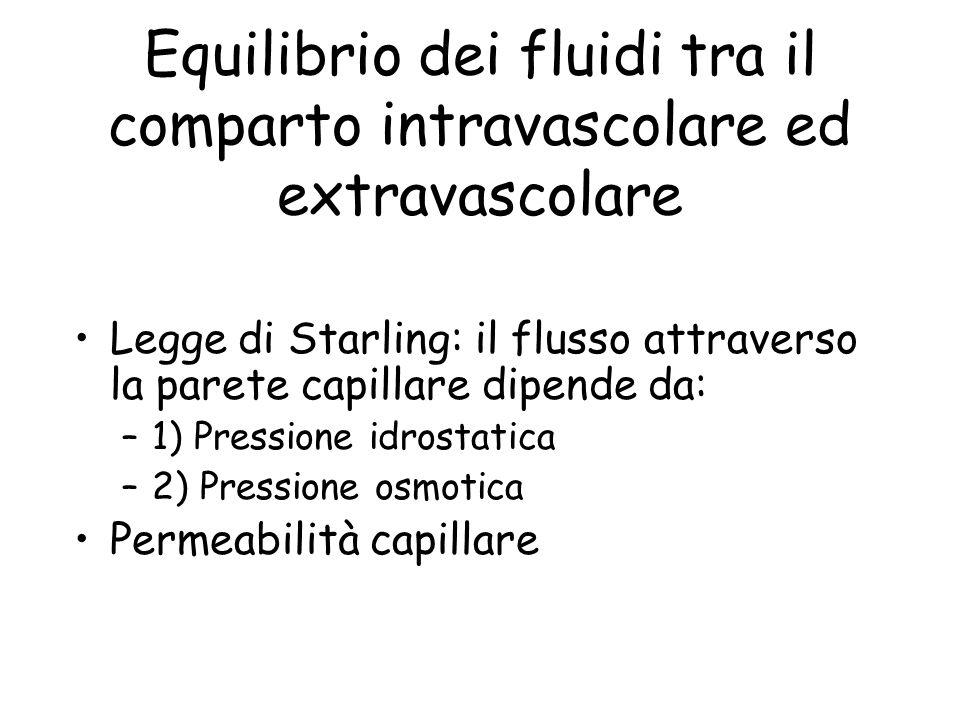 Equilibrio dei fluidi tra il comparto intravascolare ed extravascolare Legge di Starling: il flusso attraverso la parete capillare dipende da: –1) Pressione idrostatica –2) Pressione osmotica Permeabilità capillare
