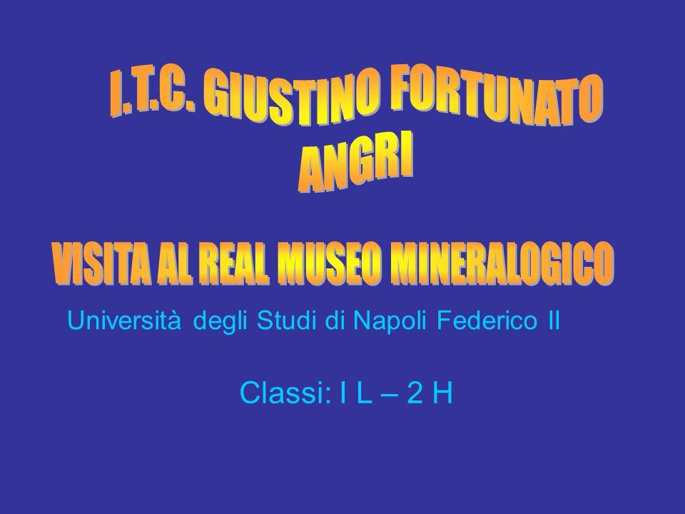 Università degli Studi di Napoli Federico II Classi: I L – 2 H