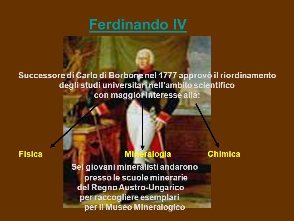 Ferdinando IV Successore di Carlo di Borbone nel 1777 approvò il riordinamento degli studi universitari nellambito scientifico con maggior interesse alla: Fisica Mineralogia Chimica Sei giovani mineralisti andarono presso le scuole minerarie del Regno Austro-Ungarico per raccogliere esemplari per il Museo Mineralogico