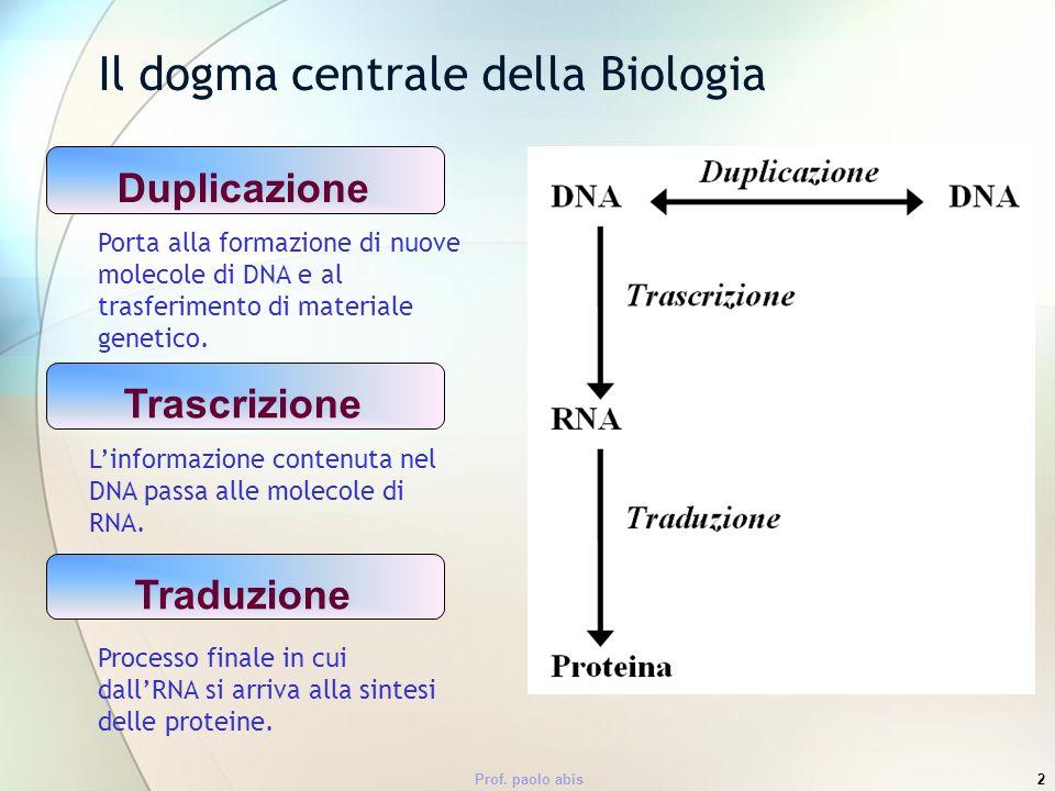 Prof. paolo abis2 Il dogma centrale della Biologia Porta alla formazione di nuove molecole di DNA e al trasferimento di materiale genetico. Linformazi
