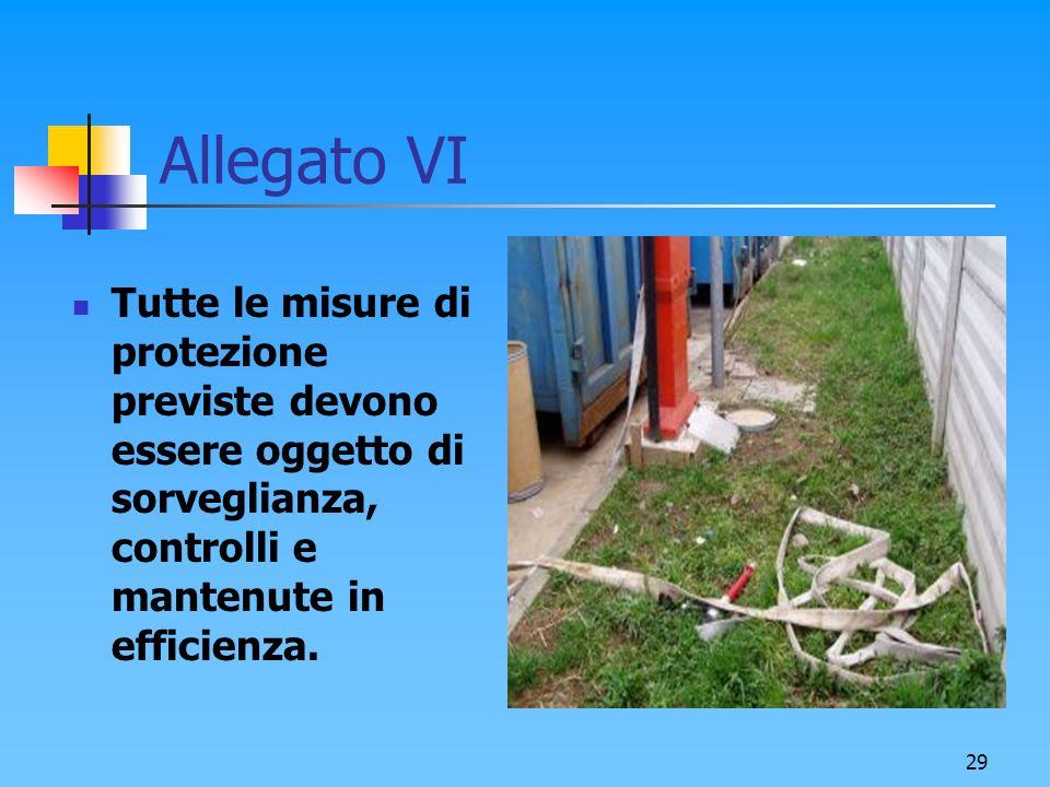 29 Allegato VI Tutte le misure di protezione previste devono essere oggetto di sorveglianza, controlli e mantenute in efficienza.