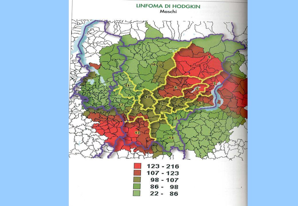 D.lgs 334/1999 art.8 effetto dominoart.