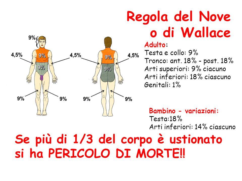 Regola del Nove o di Wallace Adulto: Testa e collo: 9% Tronco: ant. 18% - post. 18% Arti superiori: 9% ciacuno Arti inferiori: 18% ciascuno Genitali: