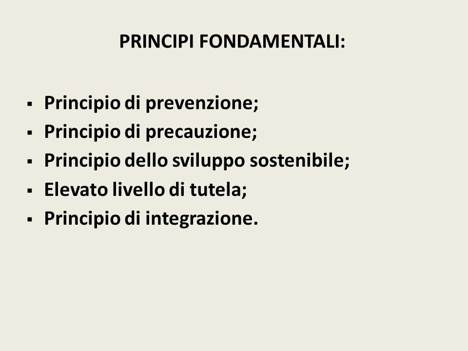 PRINCIPI FONDAMENTALI: Principio di prevenzione; Principio di precauzione; Principio dello sviluppo sostenibile; Elevato livello di tutela; Principio