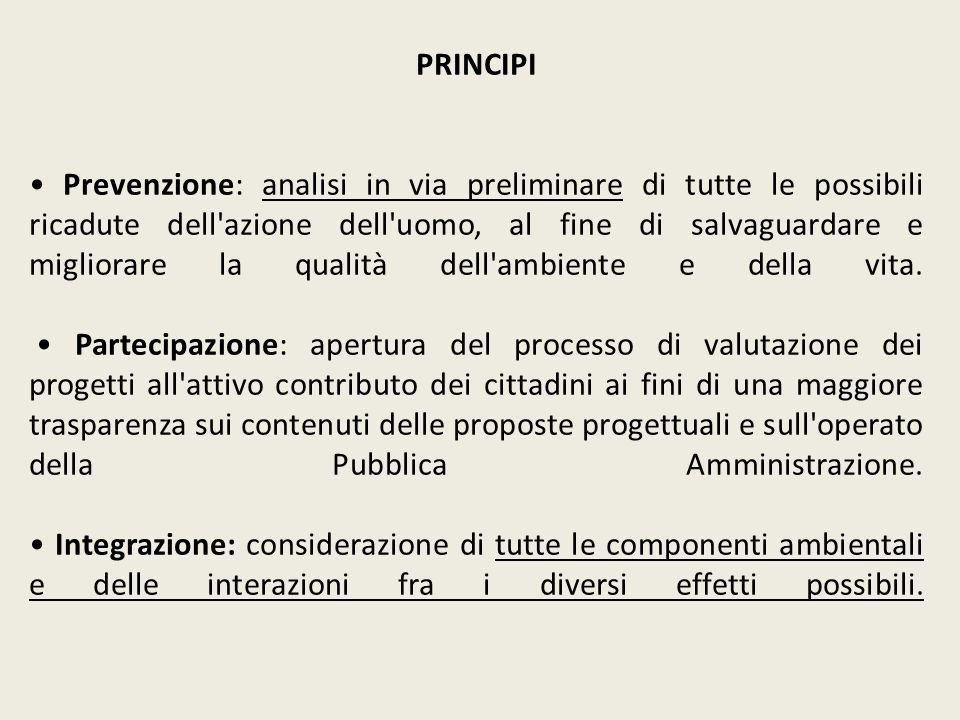 Consiglio di Stato, sez.IV, sent. 12 gennaio 2011, n.