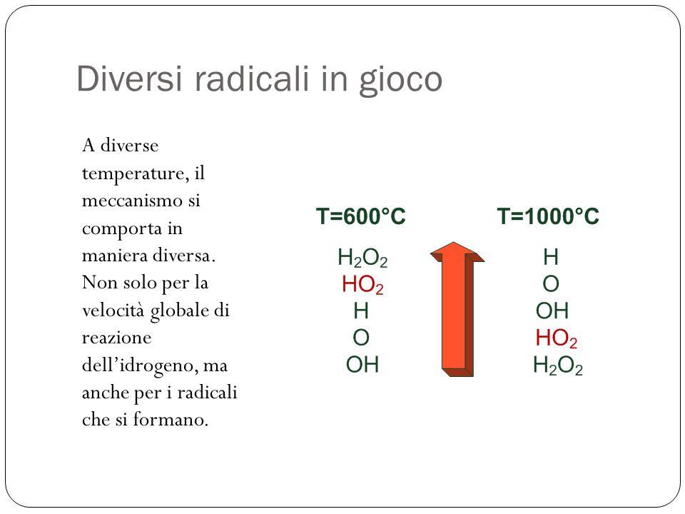 Diversi radicali in gioco A diverse temperature, il meccanismo si comporta in maniera diversa. Non solo per la velocità globale di reazione dellidroge