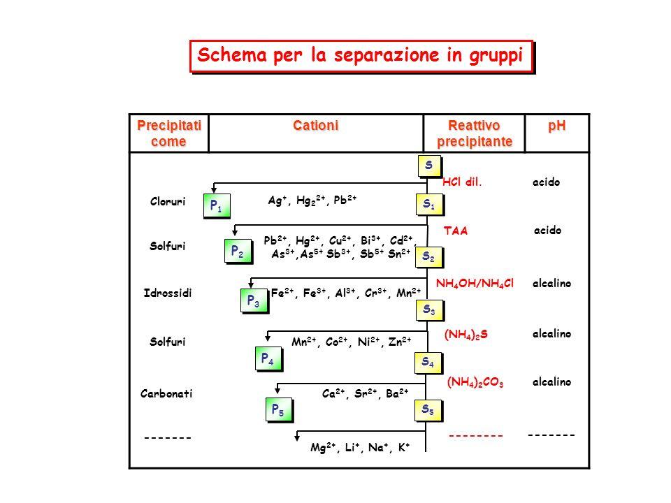 Precipitati come Cationi Reattivo precipitante pH P1P1 P1P1 P2P2 P2P2 P3P3 P3P3 P4P4 P4P4 P5P5 P5P5 Ag +, Hg 2 2+, Pb 2+ Pb 2+, Hg 2+, Cu 2+, Bi 3+, Cd 2+, As 3+,As 5+ Sb 3+, Sb 5+ Sn 2+ Fe 2+, Fe 3+, Al 3+, Cr 3+, Mn 2+ Mn 2+, Co 2+, Ni 2+, Zn 2+ Ca 2+, Sr 2+, Ba 2+ Mg 2+, Li +, Na +, K + Cloruri Solfuri Idrossidi Carbonati ------- Solfuri HCl dil.
