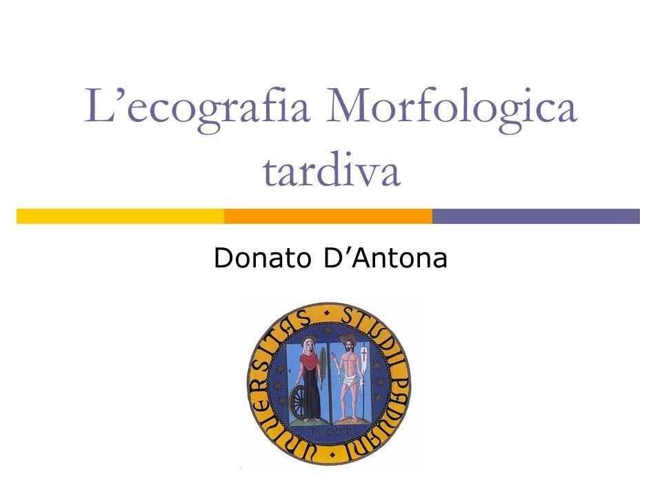 Lecografia Morfologica tardiva Donato DAntona