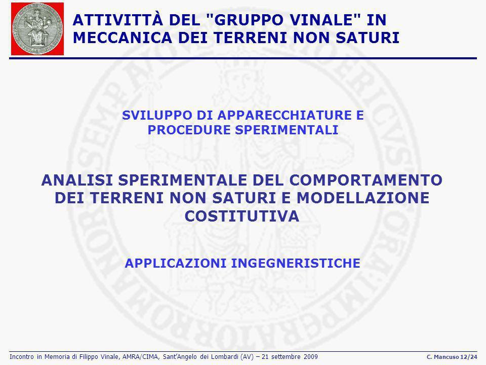 Incontro in Memoria di Filippo Vinale, AMRA/CIMA, SantAngelo dei Lombardi (AV) – 21 settembre 2009 C. Mancuso 12/24 SVILUPPO DI APPARECCHIATURE E PROC